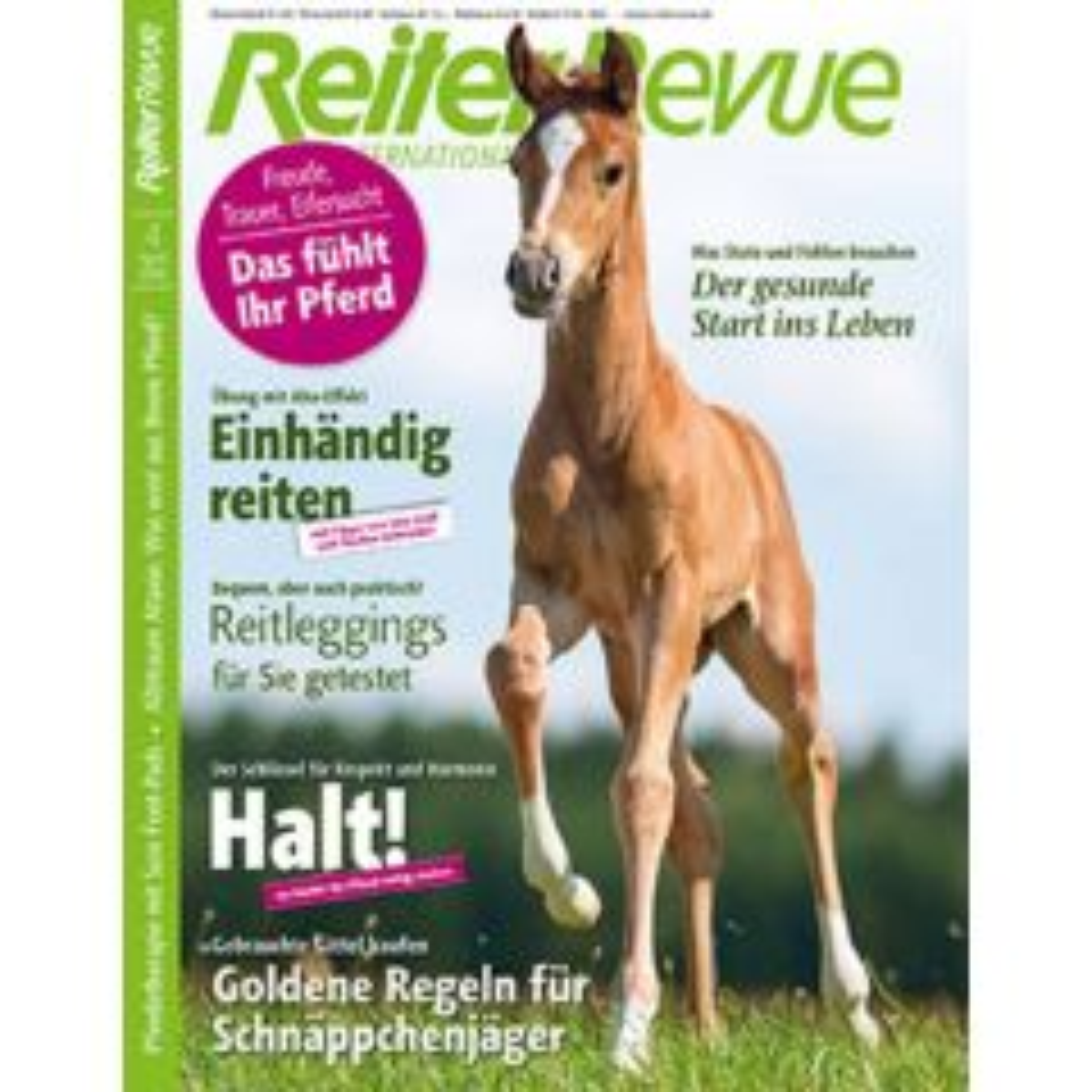 Reiter Revue Heft 4/2018